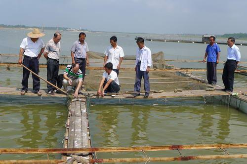 无公害水产养殖基地