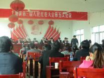 土塘镇第三届人民代表大会第五次会议胜利召开